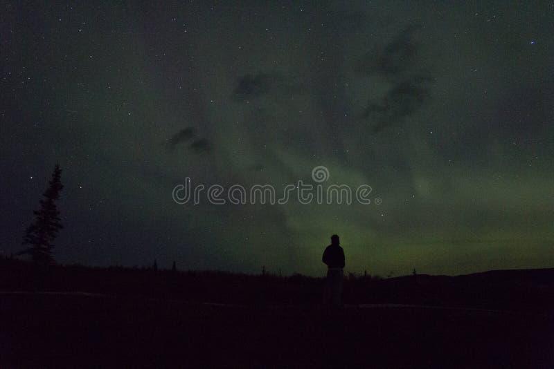 De noordelijke lichten arcoss blacked hemel van het leven Van Alaska omhoog starend bij de sterren Noordelijke lichten over de zw stock afbeeldingen