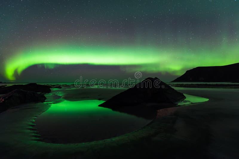De noordelijke lichten in lofoten eilanden, Noorwegen stock afbeelding