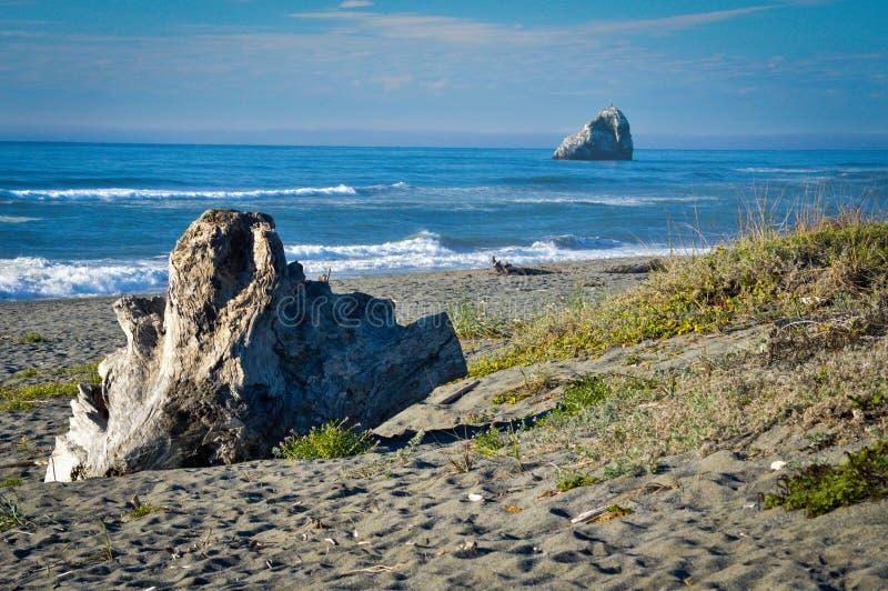 De noordelijke Vreedzame Kust van Californië stock afbeelding