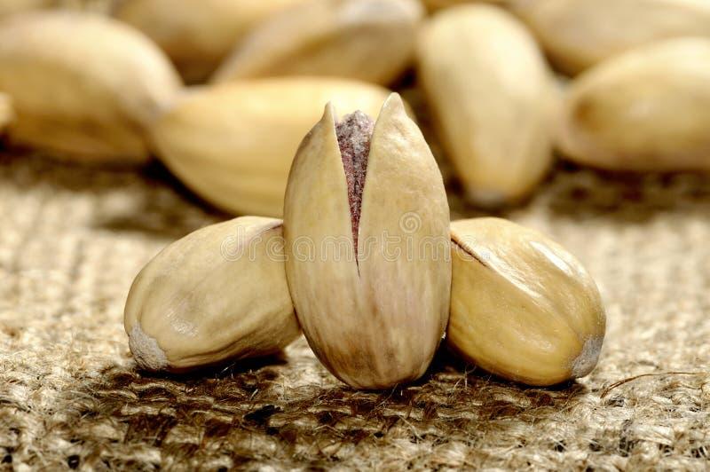 De noot van de pistache stock foto