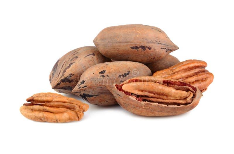 De noten van de pecannoot stock fotografie