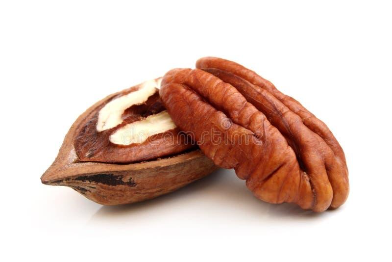 De noten van de pecannoot stock foto's