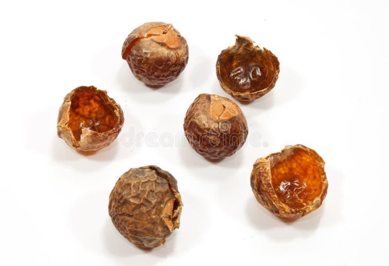 De noten van de zeep stock afbeelding