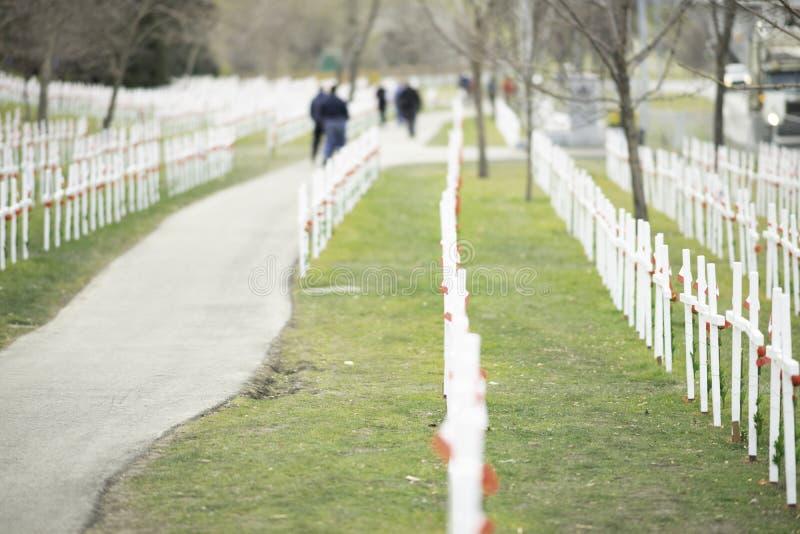 7 de noviembre de 2015 - Calgary, Alberta Canadá - Campo de cruces para conmemorar el día de la conmemoración de Canadá imágenes de archivo libres de regalías