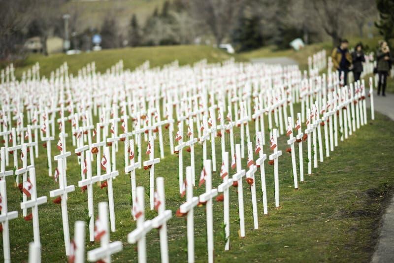 7 de noviembre de 2015 - Calgary, Alberta Canadá - Campo de cruces para conmemorar el día de la conmemoración de Canadá imagenes de archivo