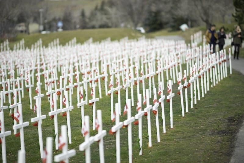 7 de noviembre de 2015 - Calgary, Alberta Canadá - Campo de cruces para conmemorar el día de la conmemoración de Canadá foto de archivo libre de regalías