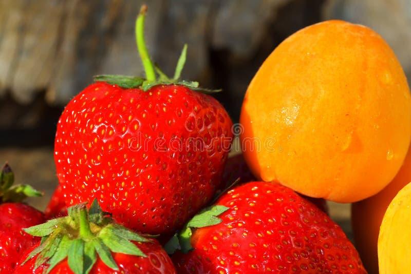 De nya bären och frukterna jordgubbeaprikoskörsbär arkivfoto