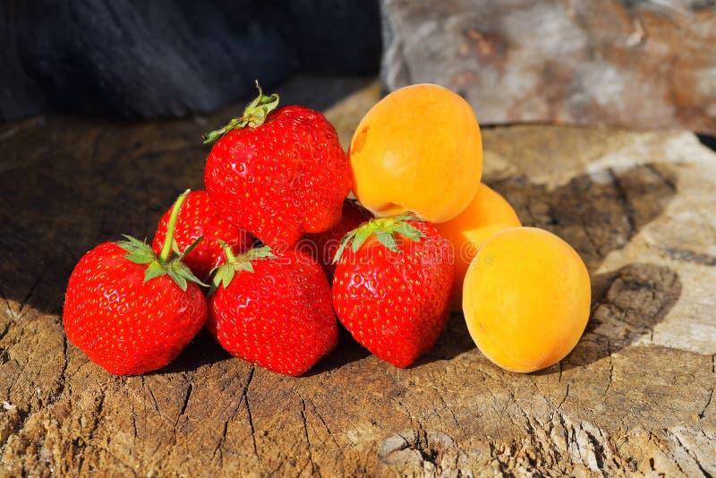 De nya bären och frukterna jordgubbeaprikoskörsbär arkivbild