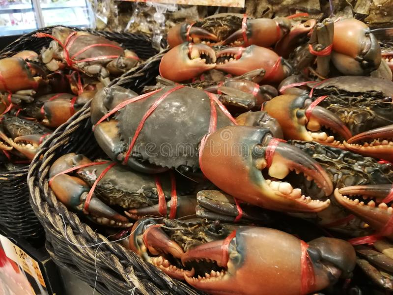 De nya krabborna är i supermarket royaltyfria bilder