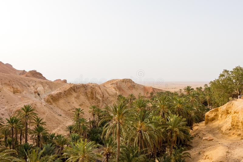 De oase Chebika in Tunesië, Afrika stock fotografie