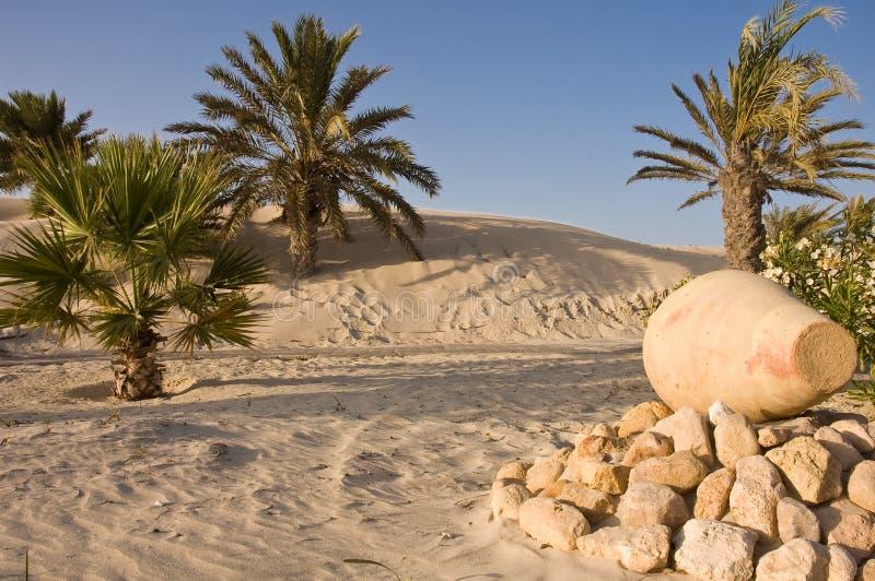 De Oase van de woestijn stock afbeelding