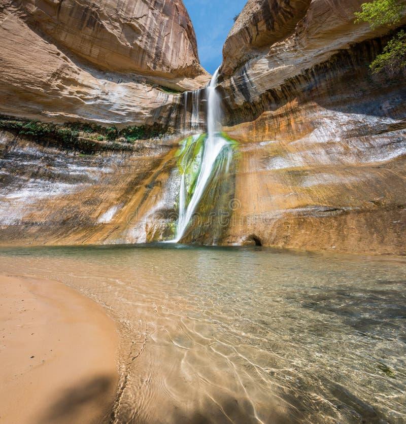 De Oase van de woestijnwaterval stock afbeeldingen