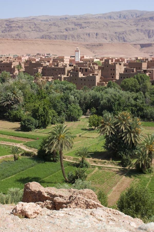 De Oase van Tinerhir, Marokko. stock foto