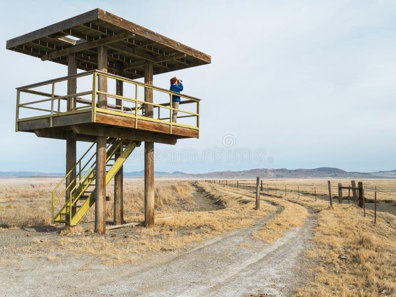 De observatietoren van het moerasland stock foto