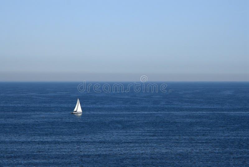in de oceaan royalty-vrije stock foto