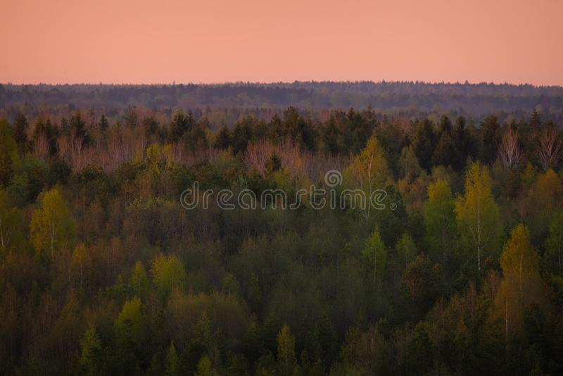 De ochtend bracht zachte kleuren uit stock foto's