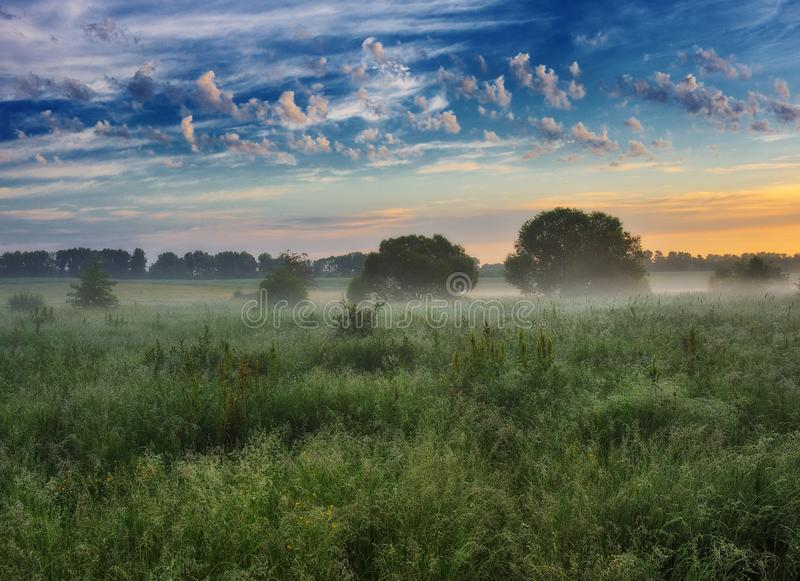 De ochtend? gebied van de lente van groen gras en blauwe bewolkte hemel Zonsopgang in de vallei van de schilderachtige rivier royalty-vrije stock foto's