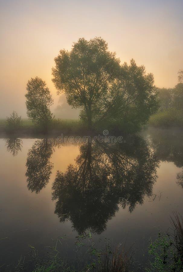 De ochtend? gebied van de lente van groen gras en blauwe bewolkte hemel Zonsopgang in de vallei van de schilderachtige rivier royalty-vrije stock afbeelding