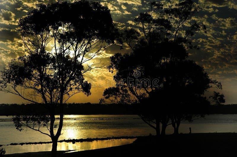 Download De ochtend heeft gebroken stock foto. Afbeelding bestaande uit zonsopgang - 294852