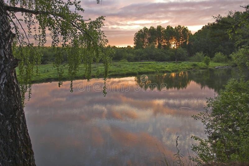 De ochtend van de zomer stock afbeelding
