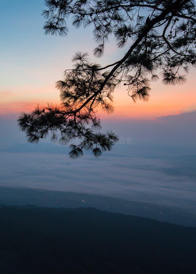 De ochtend van de zonstijging stock afbeelding