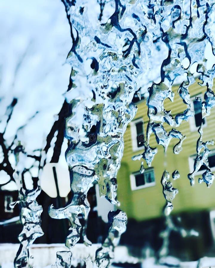 De ochtend van de ijssneeuw stock foto