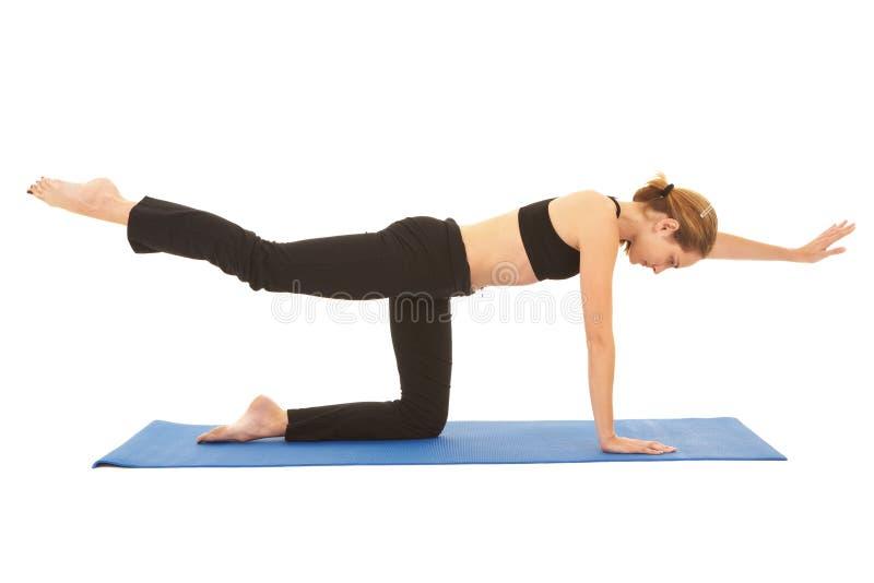 De oefeningsreeks van Pilates stock foto's