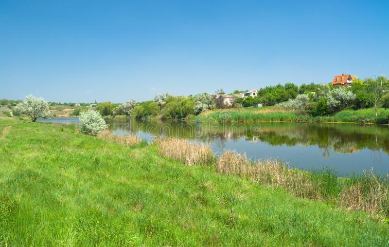 De Oekraïense landelijke zomer stock afbeelding