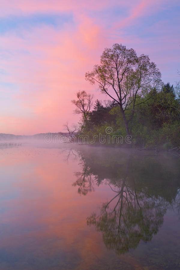 De Oever van de lente in Dawn stock afbeelding