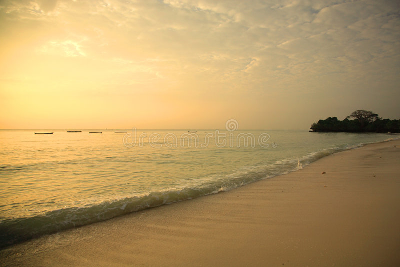 De oever van Mombasa bij zonsopgang royalty-vrije stock foto's