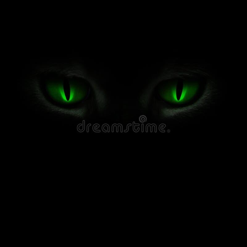 De ogen die van de groene kat in dark gloeien stock afbeeldingen