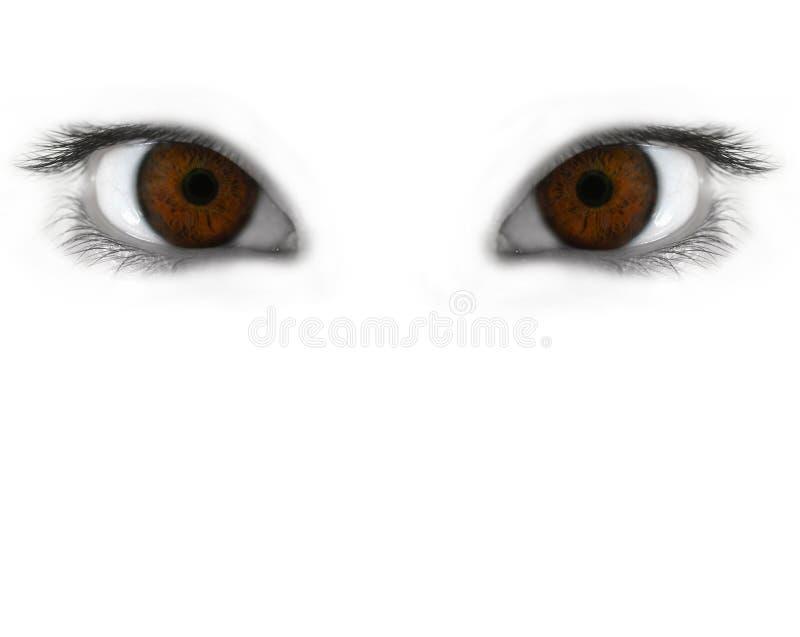 De ogen van de mysticus stock foto's