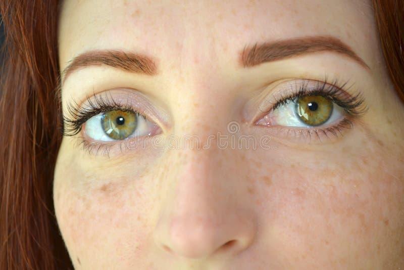 De ogen van meisje met rood haar en de groene ogen met sproeten met wimperuitbreiding op donkere achtergrond zien ernstig vooruit stock foto