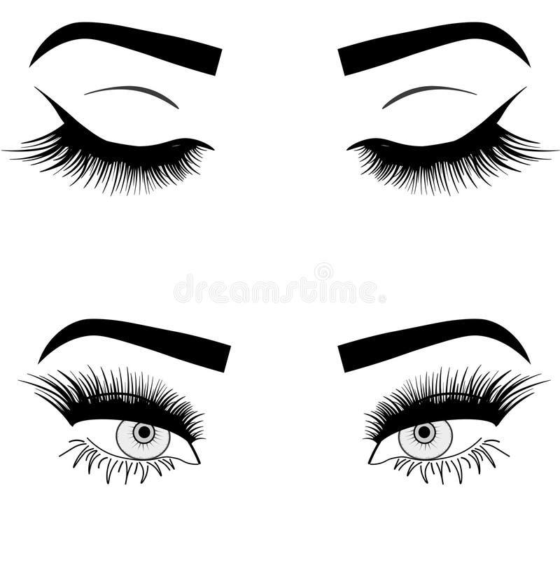 De ogeninzameling van de Webvrouw, vectorillustratie stock illustratie