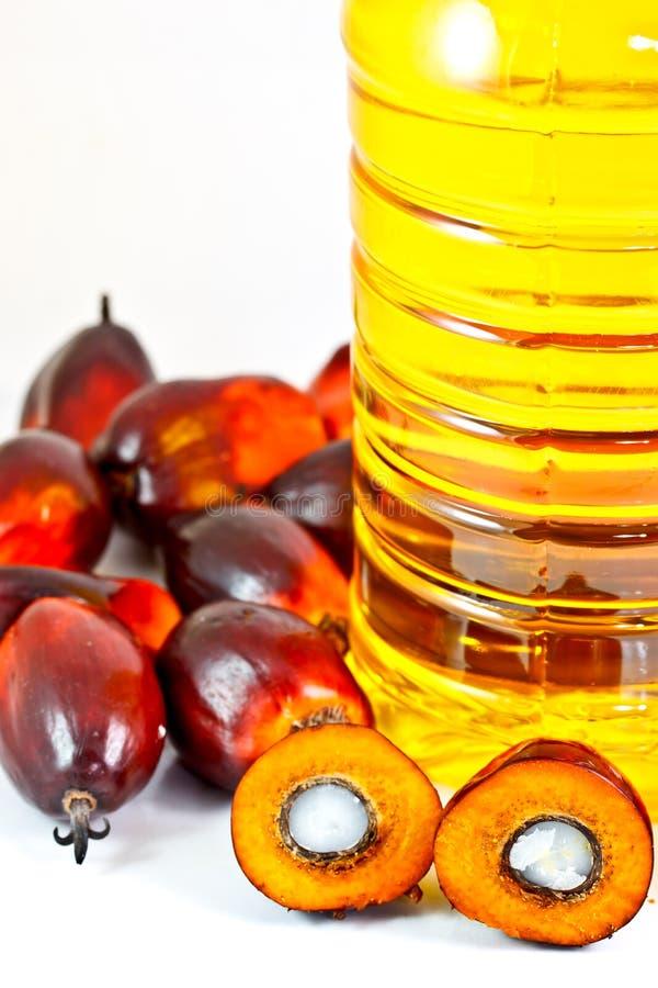 De oleïneolie van de palm met de vruchten van de oliepalm royalty-vrije stock foto