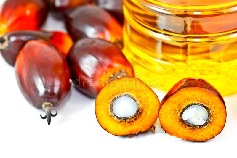 De oleïneolie van de palm met de vruchten van de oliepalm royalty-vrije stock afbeelding