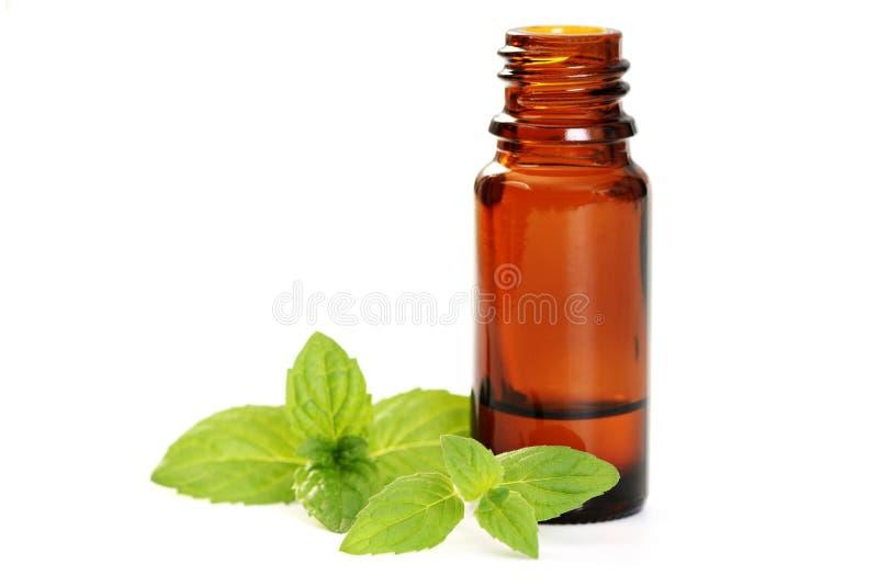 De olie van de pepermunt stock afbeeldingen