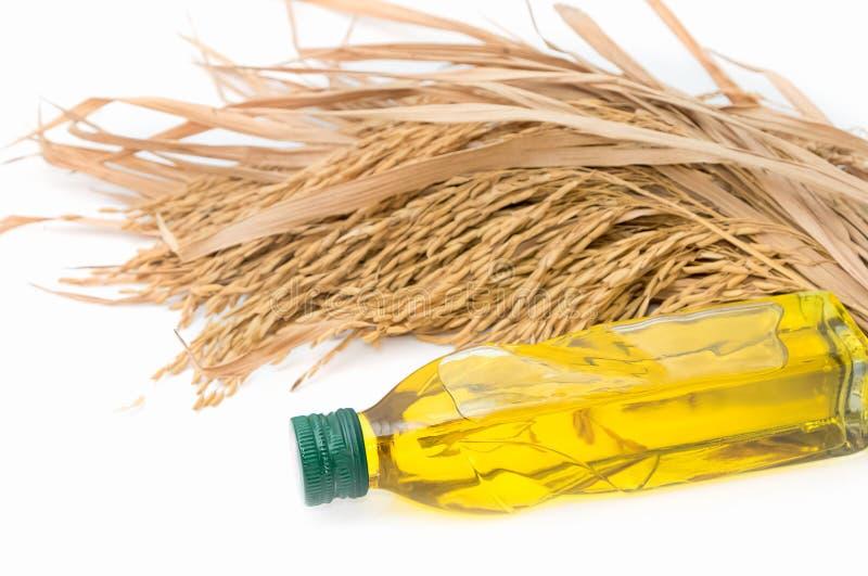 De olie van rijstzemelen in flessenglas met padieveld stock foto