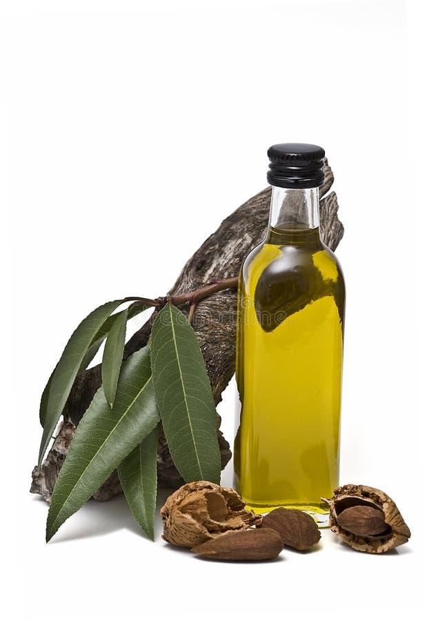 De oliefles van de amandel en een tak. stock foto
