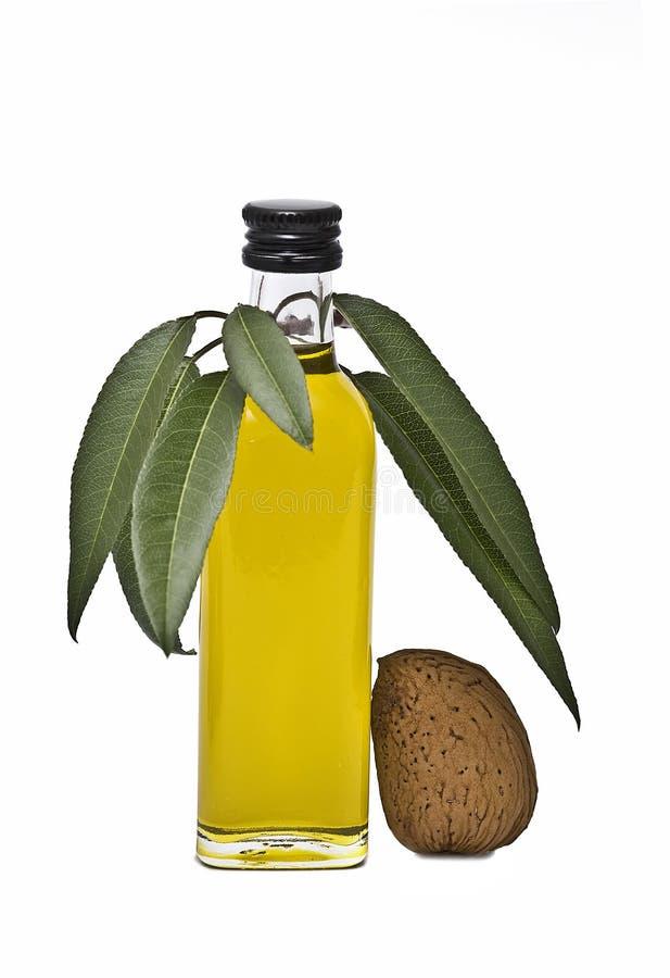 De oliefles van de amandel met bladeren. royalty-vrije stock foto