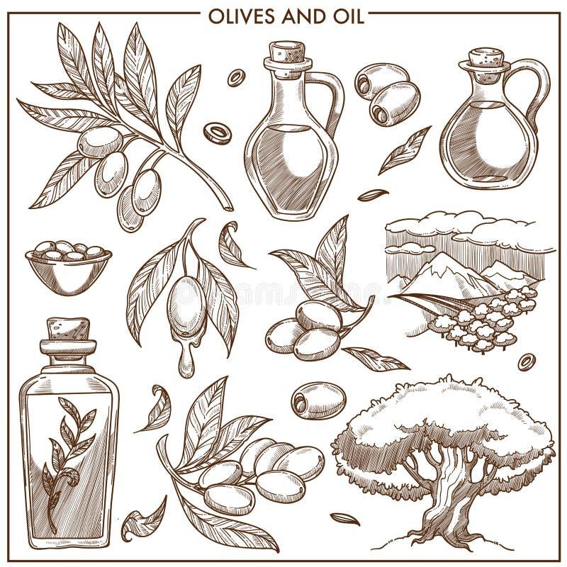 De olijven op takken en de olie in glasflessen isoleerden beeldverhaal vlakke zwart-wit vectorillustraties op witte achtergrond vector illustratie