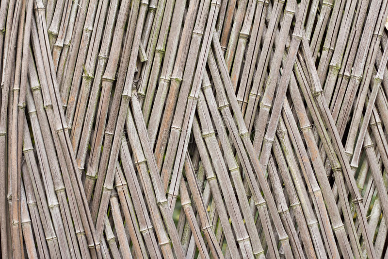 De Omheining Van Het Bamboe Royalty-vrije Stock Foto's