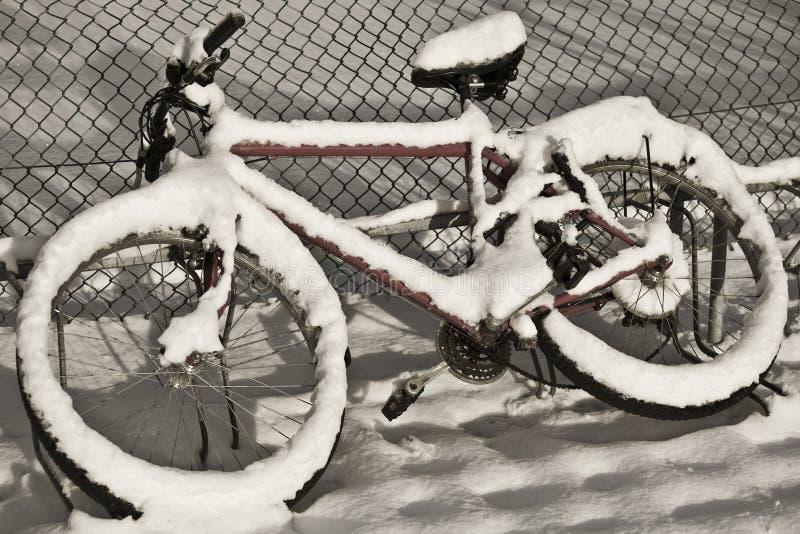 De onderbreking van de winter stock foto