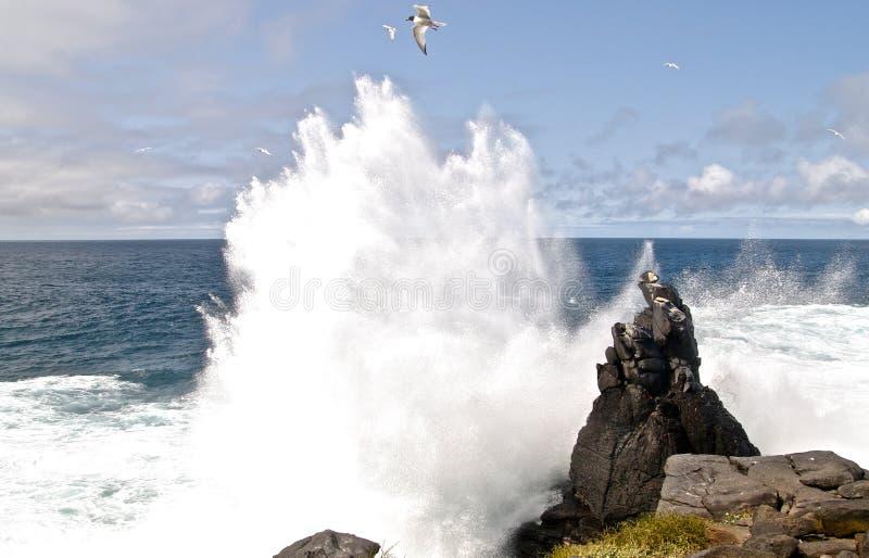 De onderbrekingen van het water tegen stenen royalty-vrije stock afbeeldingen
