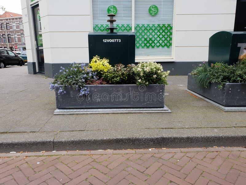 De ondergrondse container van de huisvuilverwijdering met installaties rond het om afval rond het te verhinderen in de stad van D royalty-vrije stock foto's