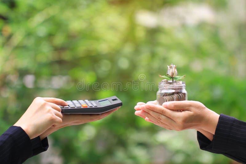 De onderneemster gebruikend een calculator en houdend bloem maakt van bankbiljet op muntstukkengeld in glasfles op groene achterg stock afbeelding