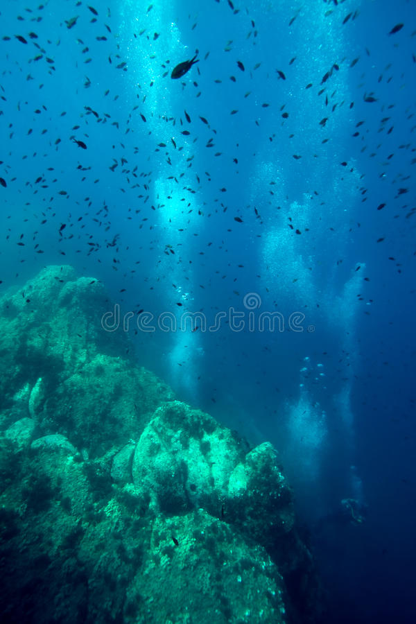 De onderwaterwereld stock foto