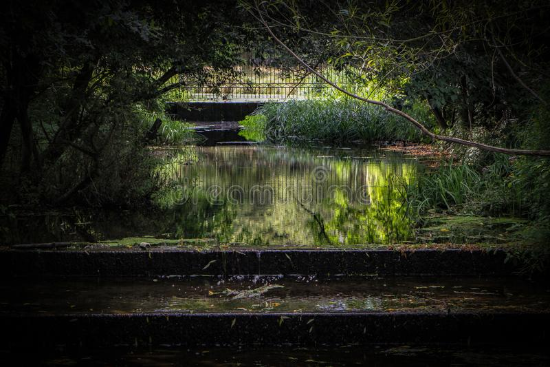 De ondiepe waterval bij de 'Watertuin 'in Dichtbegroeid Park, dichtbij Hampton Court stock afbeeldingen