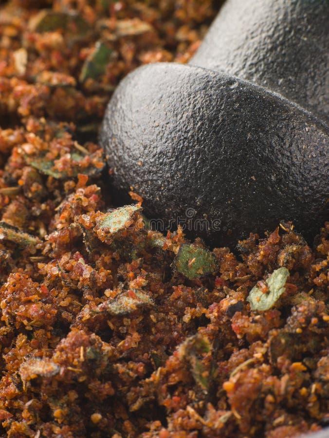 De Oneffenheid van het Kruid van Cajun in een Stamper en een Mortier royalty-vrije stock afbeeldingen