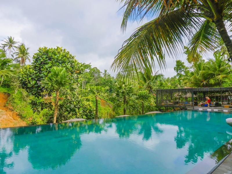 De oneindigheidspool bij tropische toevlucht in Azië met mening aan de wildernis in vakantie reist en toerismeconcept royalty-vrije stock foto
